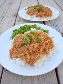Teriyaki Shredded Chicken and Rice